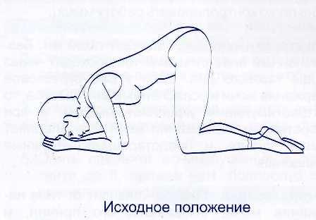 akvaaerobika-pomozhet-pri-opushenii-vlagalisha